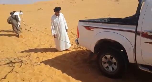 سعوديون يشغلون هايلوكس بطريقة مختلفة بعد أن نفدت بطاريته