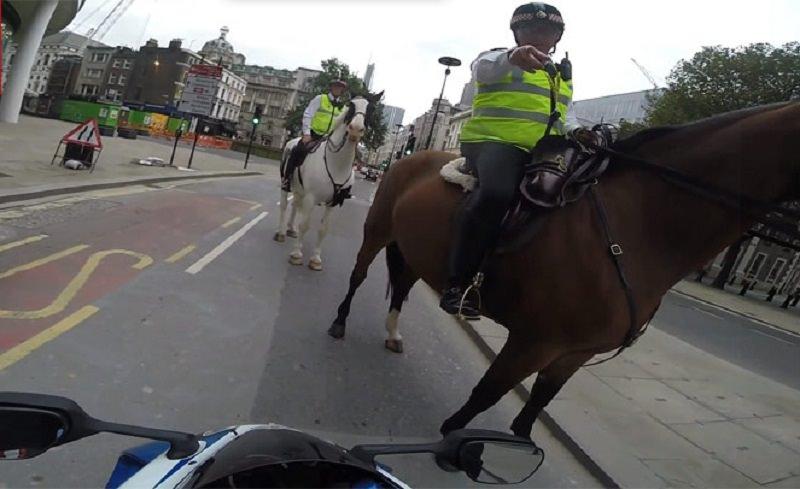 شرطي على حصان يوبخ راكب دراجة بسبب القيادة المتهورة
