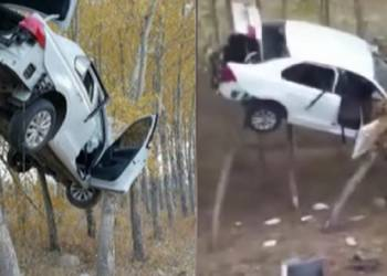 شاهد سيارة تسقط على الأشجار في حادث غريب