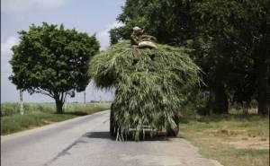 الطرق التي يستخدموها المزارعون للنقل
