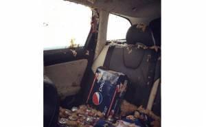الطعام والشراب يلطخ مقاعد سيارة