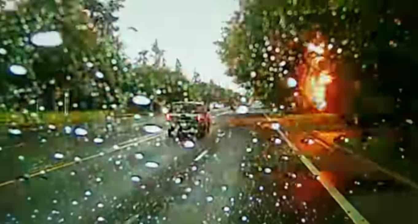 صاعقة البرق تحرق شجرة وتعطل حركة السير على الطريق